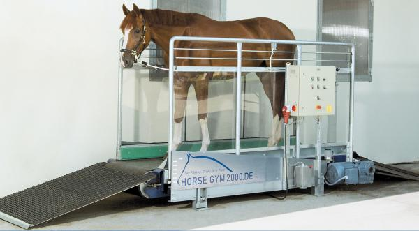 Tapis d'entrainement chevaux S2 – 10km/h