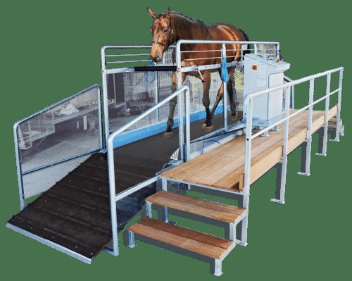 Tapis d'entrainement chevaux Speed trotteur T4/T5 – 45km/h