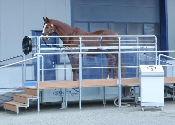 Tapis d'entrainement chevaux Ergo trotteur T2 – 25km/h